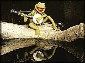 kermit_banjo